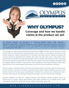 Why Olympus Insurance Florida?