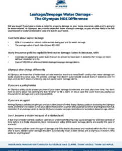 Homeowners (HO3) Leakage/Seepage Water Damage Coverage