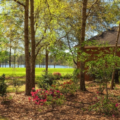 Spring Lawn and Landscape Care Checklist for Floridians