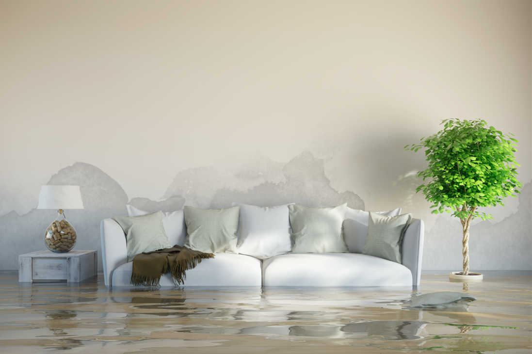 5 Things Floridians Should Know about Flood Insurance