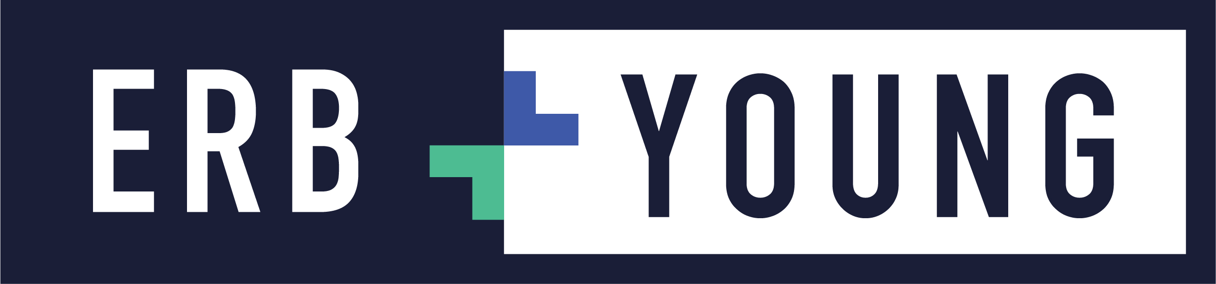 Erb and young - New Logo