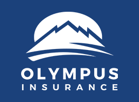 Olympus Insurance Brand Guide graphic