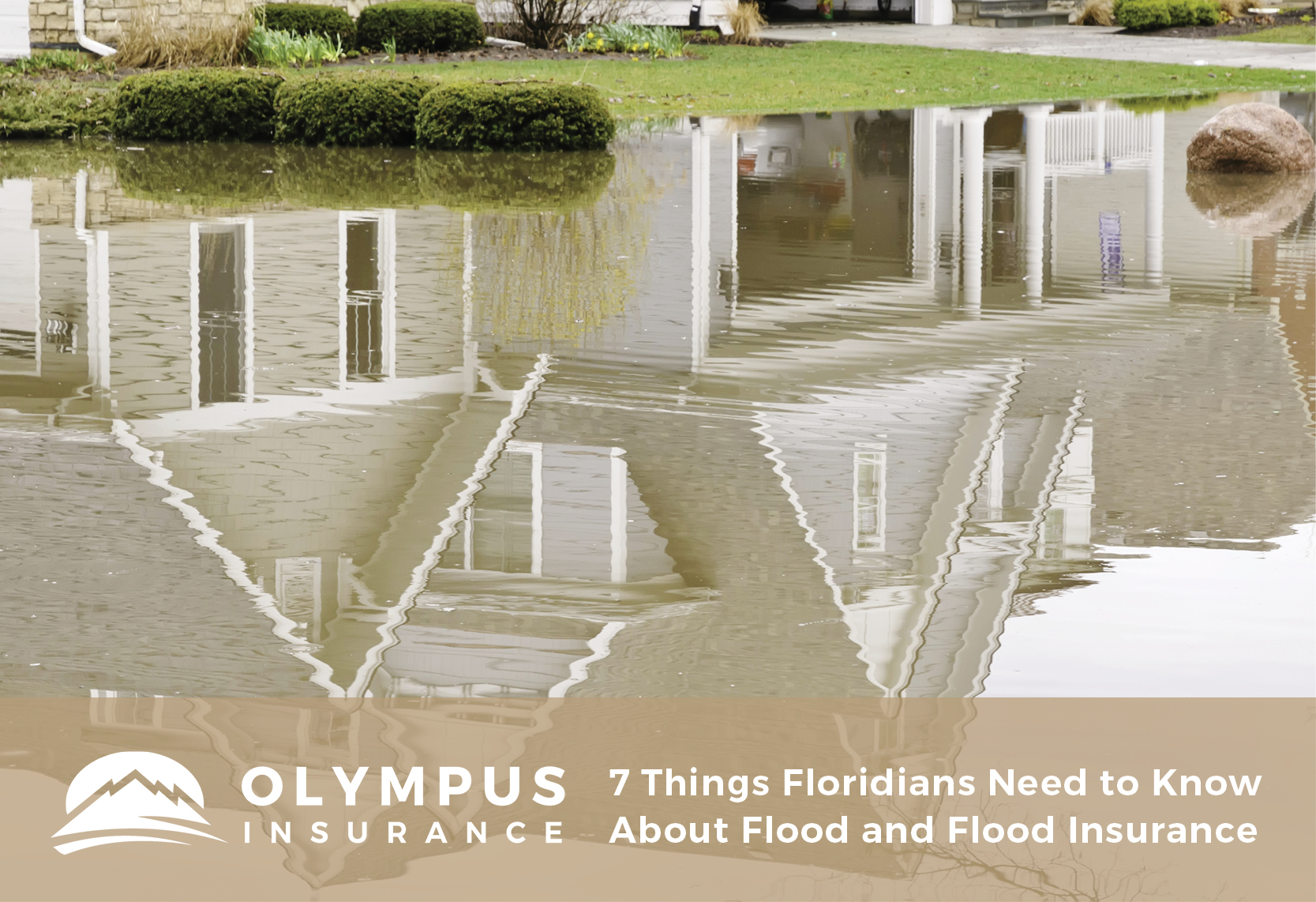7 Things Floridians Need to Know About Flood and Flood Insurance